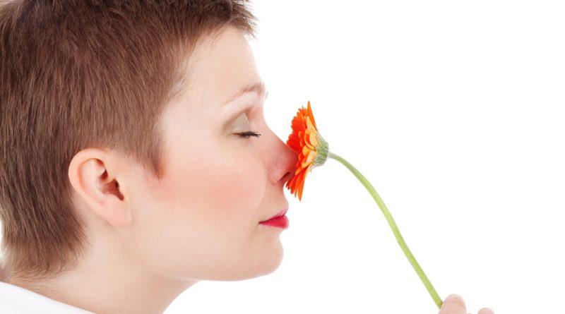 Obdarujte ženu květinou, která se k ní hodí podle jejího znamení