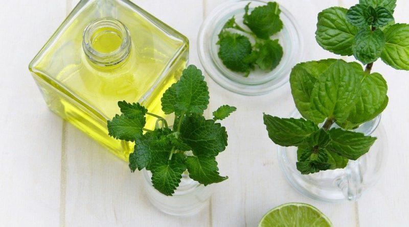 Jaké bylinky a rostliny lze používat při aromaterapii?